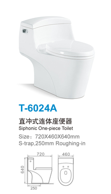 T-6024A