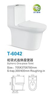 T-6042