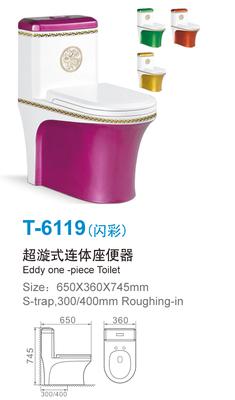 T-6119-闪彩